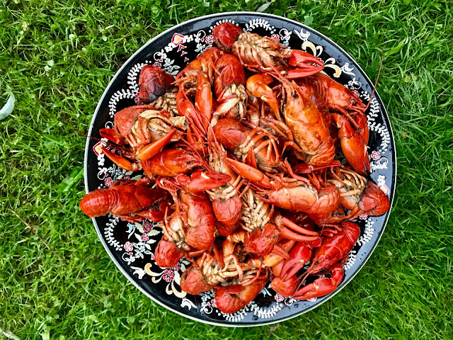 crayfish,  pure food camp, Skane, Sweden