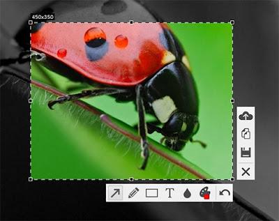 تحميل برنامج تصوير سطح المكتب وعمل الشروحات floomby 2019