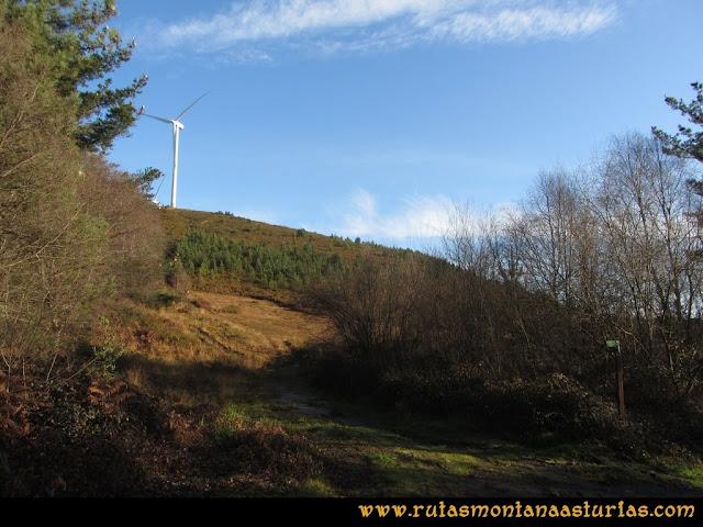 Ruta Sierra Bufarán, picos Degollada o Grande y Cotera: Camino al parque eólico
