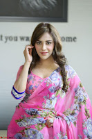 Angela Krislinzki Rogue Movie Fame Telugu Actress in Saree Backless Choli 091.JPG
