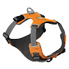Ruffwear Front Range Harness, Medium, Campfire Orange