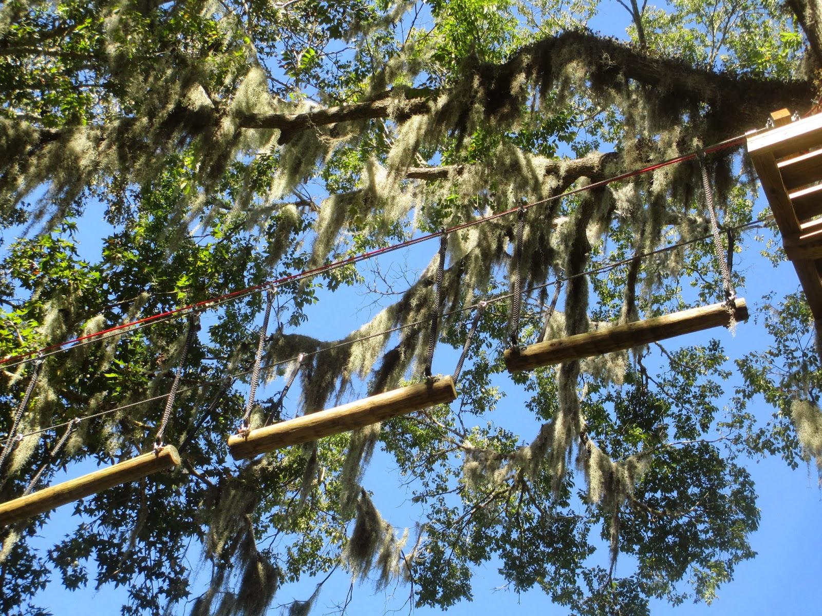 Ziplining Across The Usa Sunday October 27 Zoom Air Daytona
