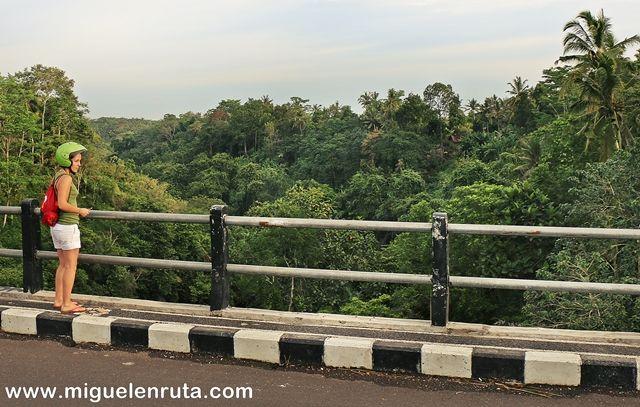 Carretera-selva-Bali