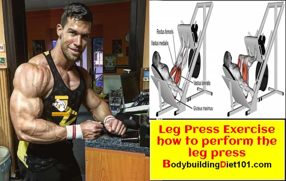 Leg Press Exercise - how to perform the leg press