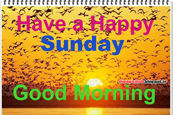 Have A Happy Sunday Good Morning Greeting Cards