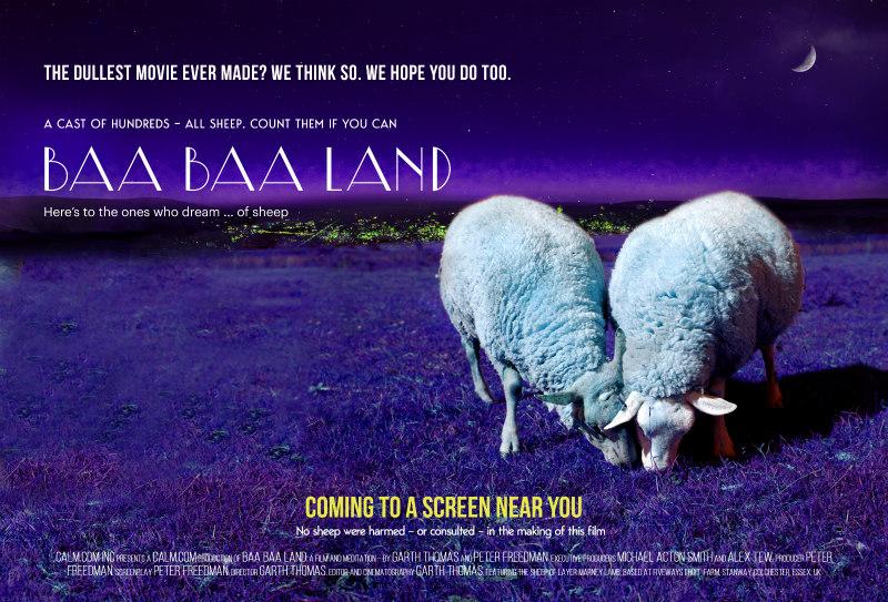 baa baa land poster