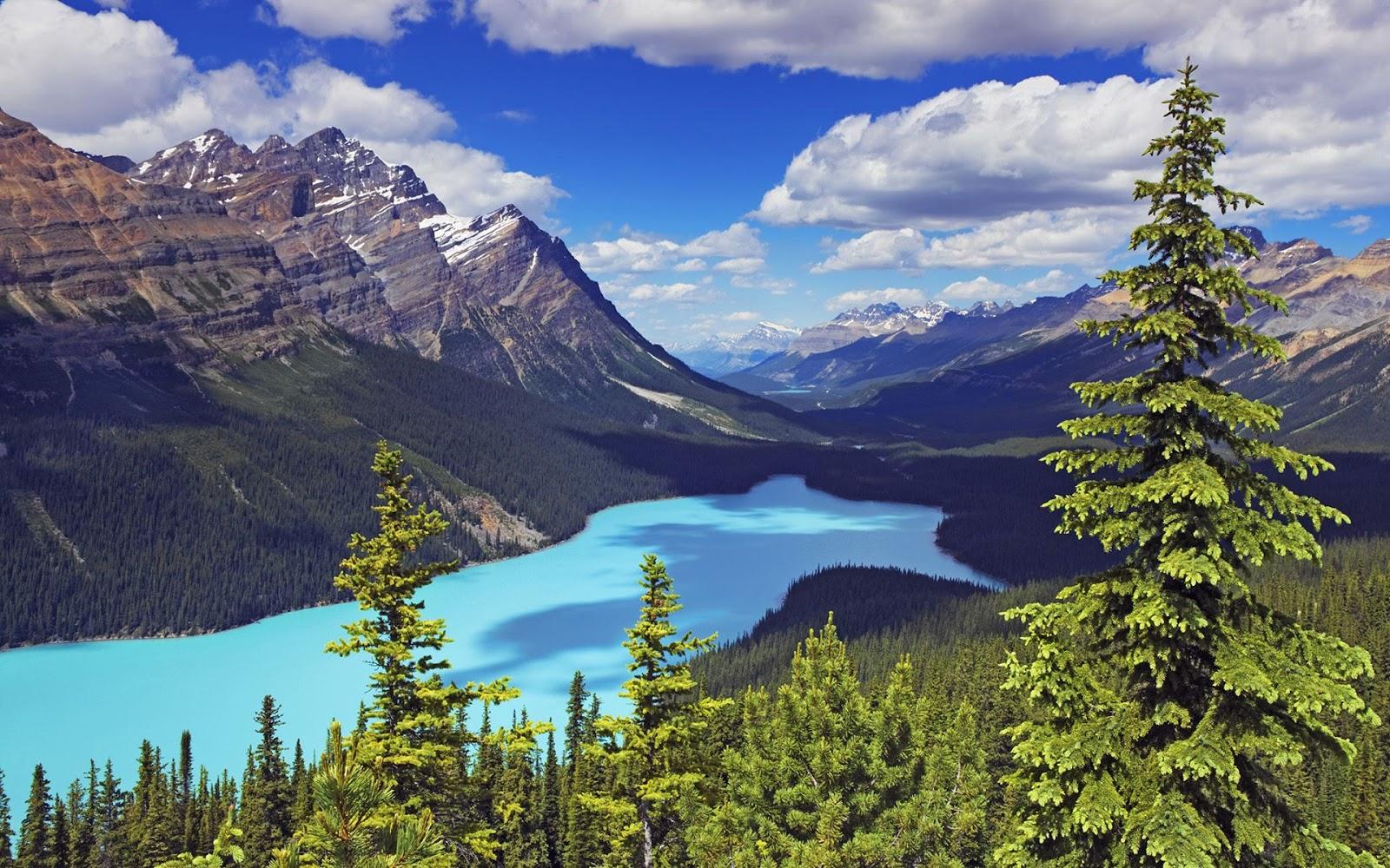 nationalpark alberta kanada - photo #17
