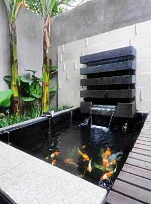 Sirkulasi Kolam Ikan : sirkulasi, kolam, Mendesain, Filter, Kolam, Akuarium