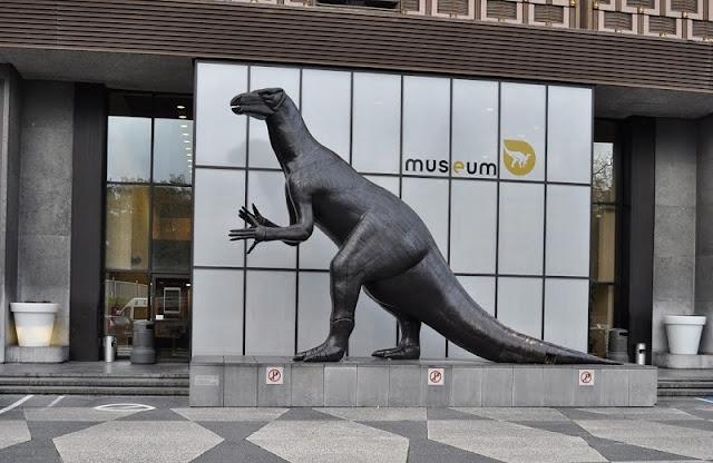Museu das Ciências Naturais em Bruxelas