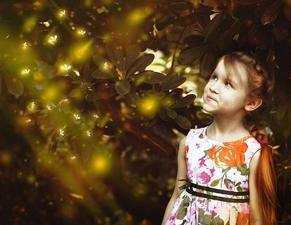 Fireflies: They Sparkle and Shine to Light Up Your Garden