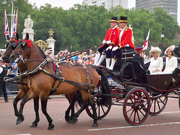 Jutrzejsze Trooping the Colour.