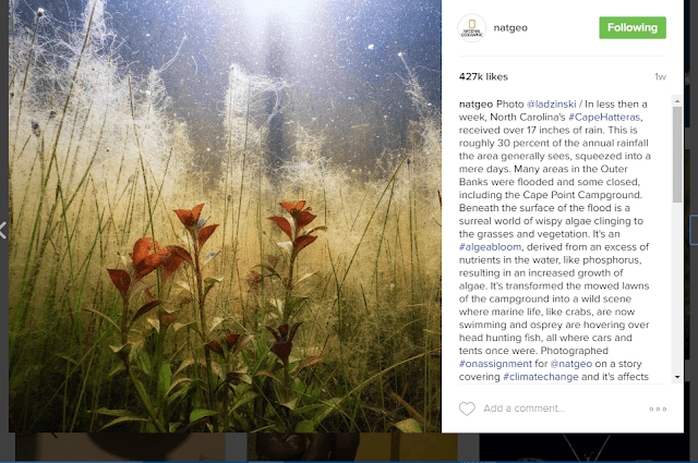 NatGeo does a wonderful job with their captions and comments to boost engagement with their Instagram users.