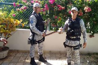 Guarda Civil Municipal Ambiental de Salvador (BA) resgata mais de 900 animais silvestres no último ano