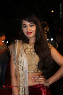 Actress Vennela Stills in Lehenga Choli at Gemini TV Puraskaralu 2016 Event  0043.JPG