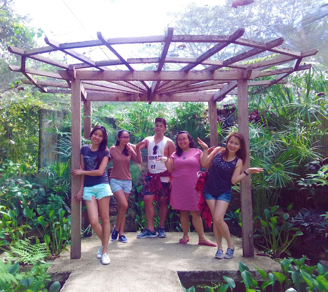 butterfly farm in tagbilaran bohol
