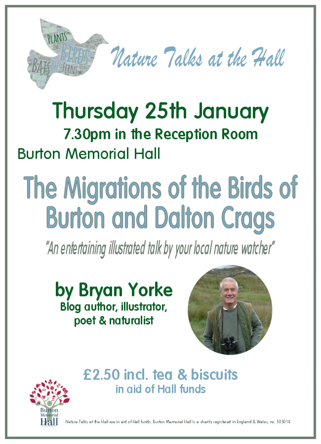 Birds of Dalton Crags and Hutton Roof