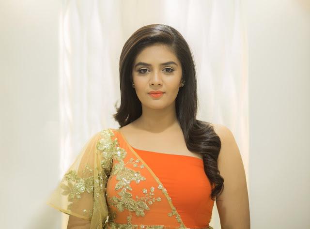 Sreemukhi Stills at Zee Golden Awards 2017