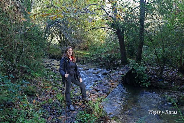 Senda de la cascada del río Nonaya, Salas, Asturias