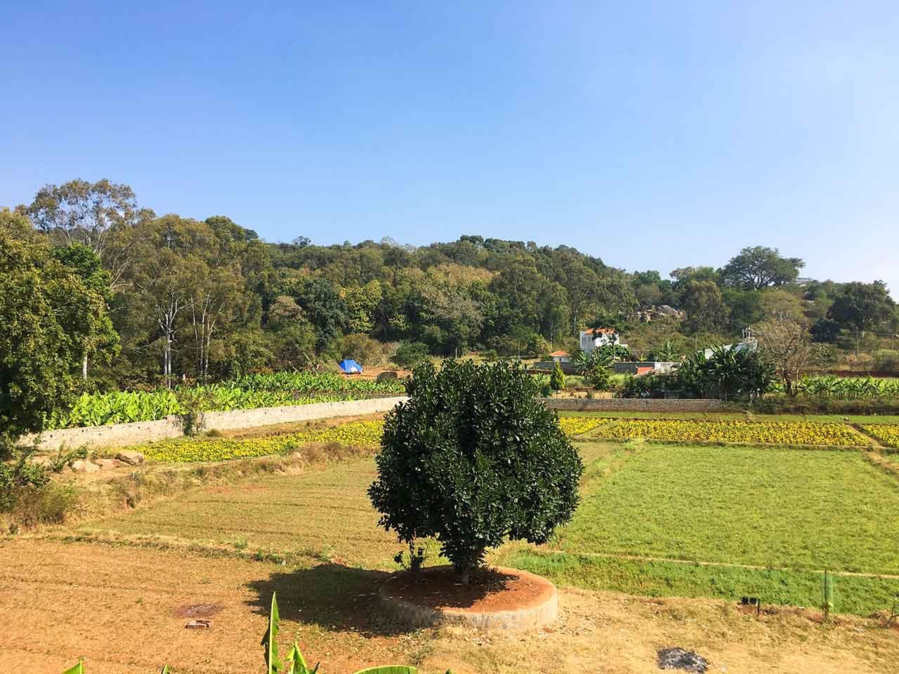 yelagiri hills group stays