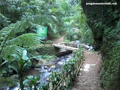 Wisata Alam Capolaga Adventure Camp Subang