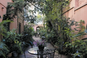 Joy Of Nesting Gardening In My Dreams Charleston
