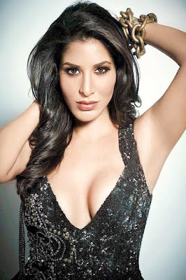 sophie-choudry-to-be-ambassador-of-british-asian-trust