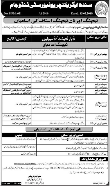 Sindh Agriculture University Tando Jam Jobs 2019 For Teaching & Non-Teaching