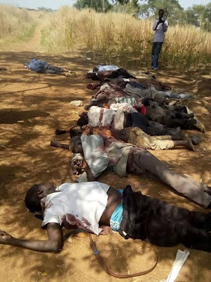 40 people including children killed by Fulani herdsmen in Southern Kaduna