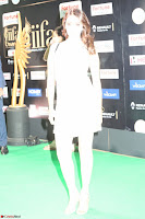 Beautiful Girls South Actress at IIFA Utsavam Awards 2017  Exclusive 14.JPG