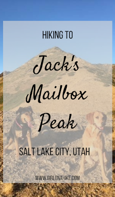 Hiking to Jack's Mailbox Peak, Utah, Hiking in Utah with Dogs