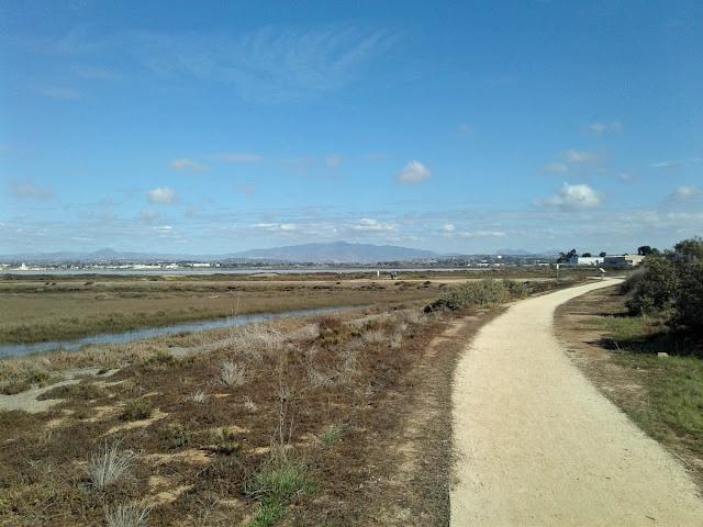 Bayshore Bikeway walking path