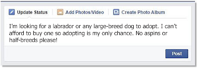 choose dog adopter - annoying dog owner on facebook