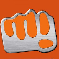 Micromax Q395Micromax Q411 Flash File
