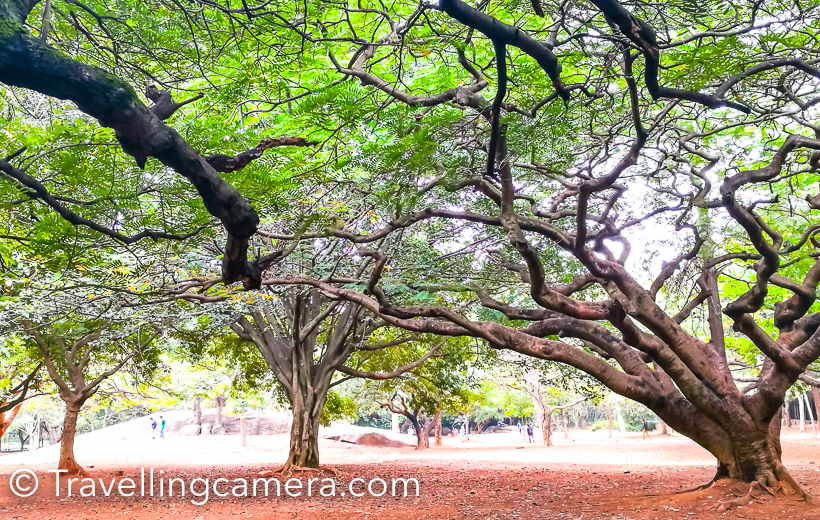 Lalbagh is one of the most popular places in Banglore and not only amongst tourists but locals also like coming to this huge green landscape for early morning walk, jogging or yoga. The place is very well maintained and different parts of the garden are dedicated to specific purposes.     There is a e-kart ride which takes you through various parts of Lalbagh and the driver usually tells you about various points on the way. There are some historical architectures and one of them was pigeon tower, where all pigeons of royal family used to live. These pigeons were used for sending messages from one part of the world to the other. I will not spoil the fun by telling all that you see in Lalbagh of Banglore.