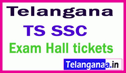 Telangana TS SSC 10th Class Hall tickets Download