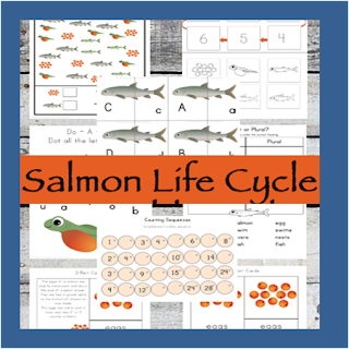 salmon life cycle preschool worksheets