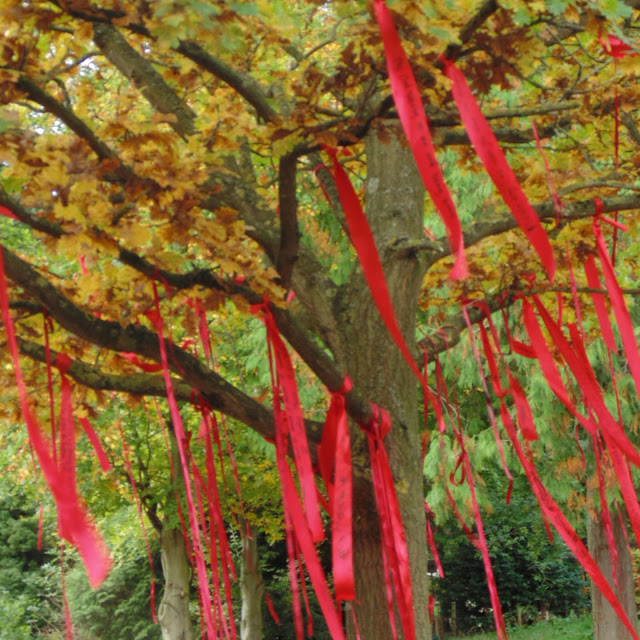 Ribbon tree at Yorkshire sculpture park