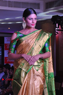 South Indian Celebrities Pos at Love For Handloom Collection Fashion Show  0040.jpg