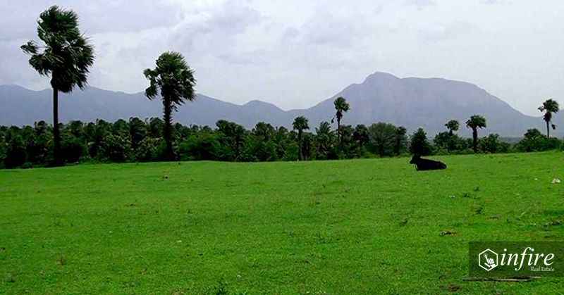 Residential Land For Sale at Kanthalloor, Munnar, Kerala