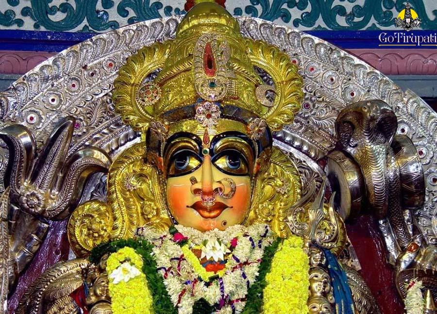 Hire Escort in Andhra-pradesh bhimavaram