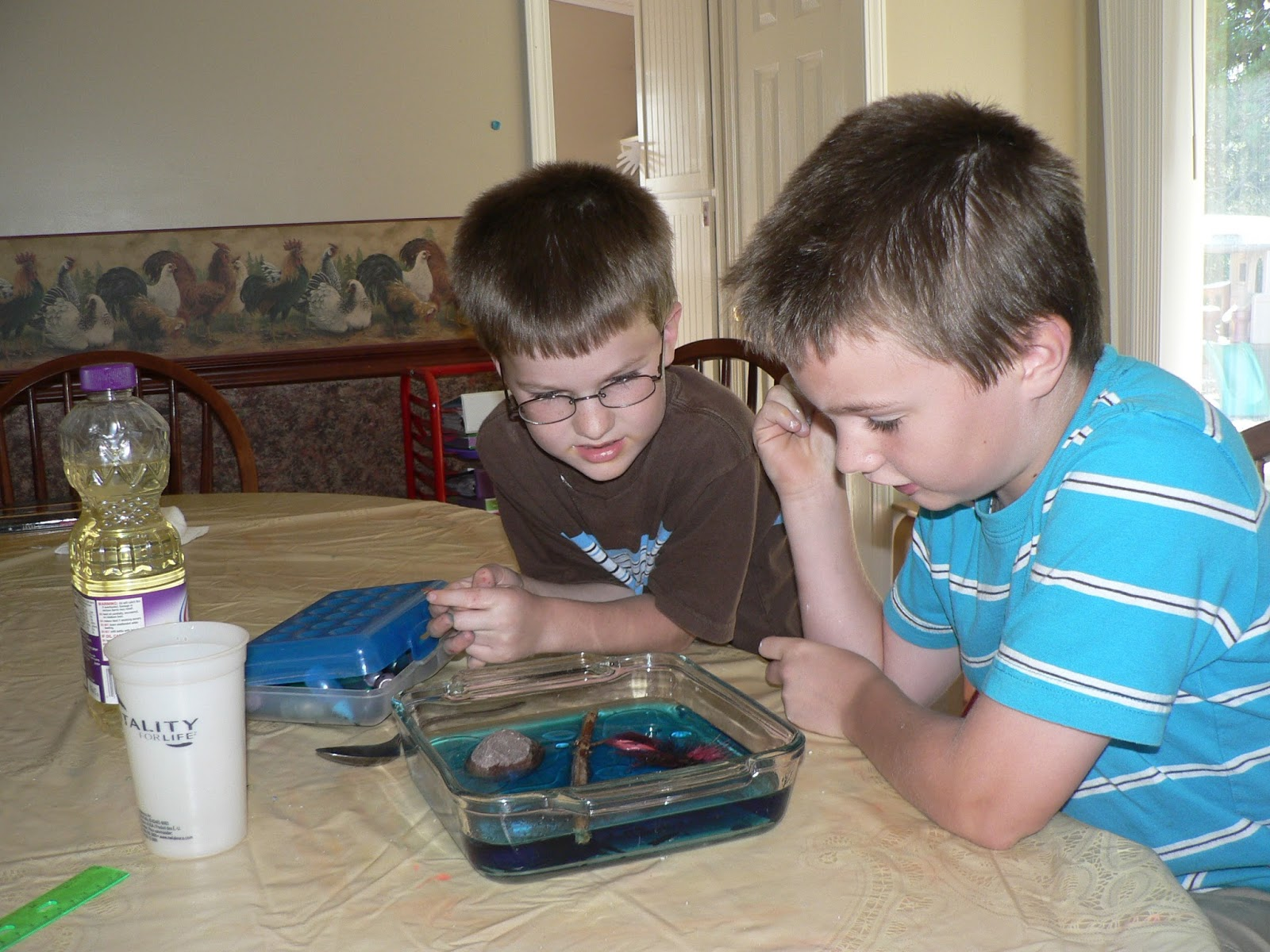 Schooling At Home Happenings September Misc Pictures