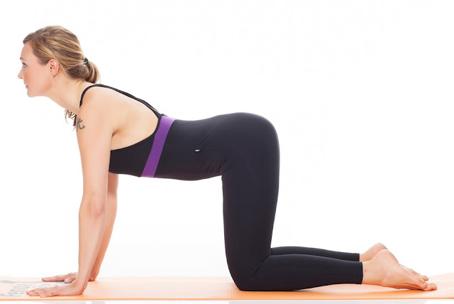Cat Pose Yoga Steps and Benefits