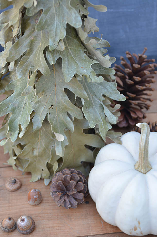 Learn how to use dried oak leaves to create a beautiful tree for your fall decor.  Created by anderson + grant for Craftberry Bush.