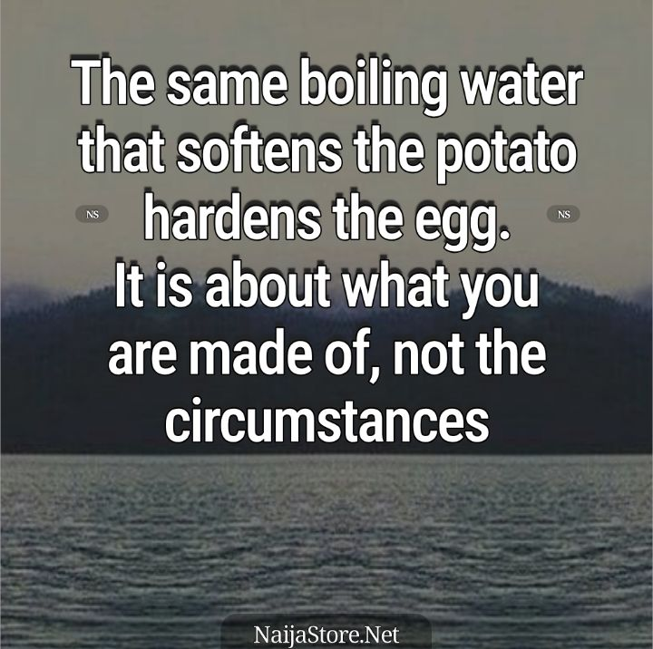 Proverbs: The same boiling water that softens the potato hardens the egg. It is about what you are made of, not the circumstances - Proverbial Quotes