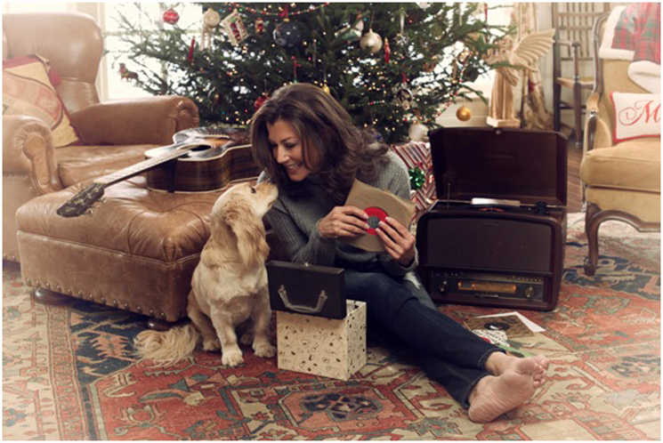 Tennessee Christmas with Amy Grant | A GIVEAWAY #TennesseeChristmas #flyby