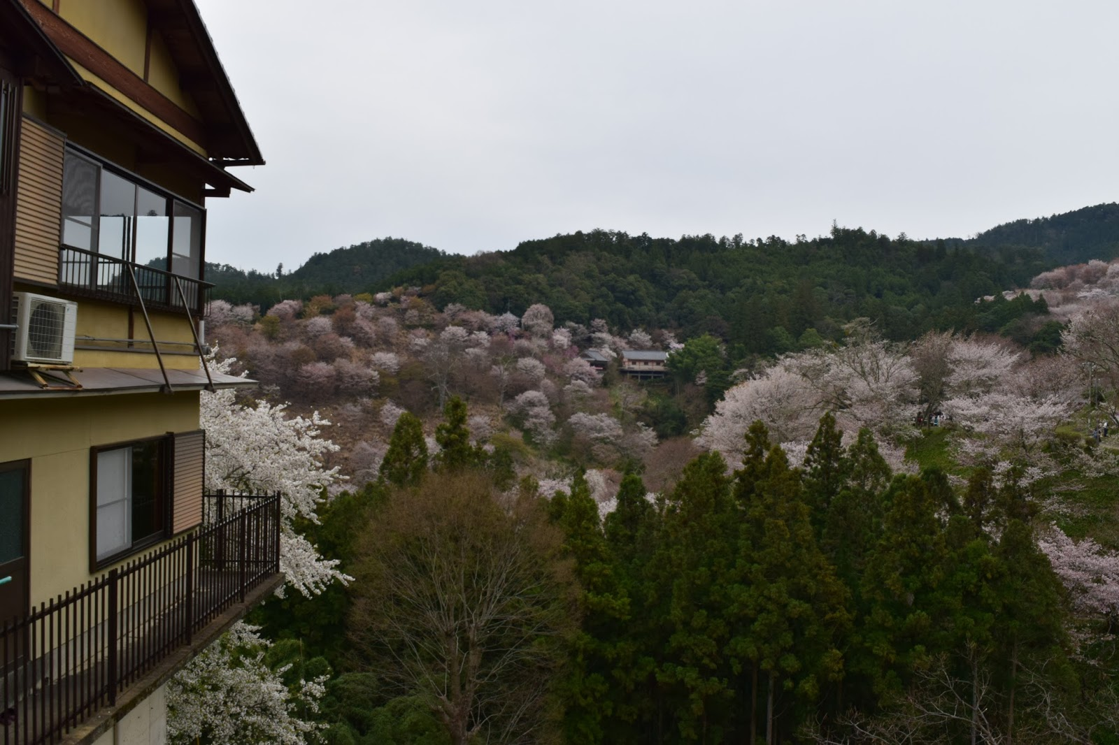 Japanese house and Yoshinoyama