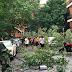 عواصف و رياح قوية تضرب مدينة مونتريال  تسبب في قطع التيار الكهربائي