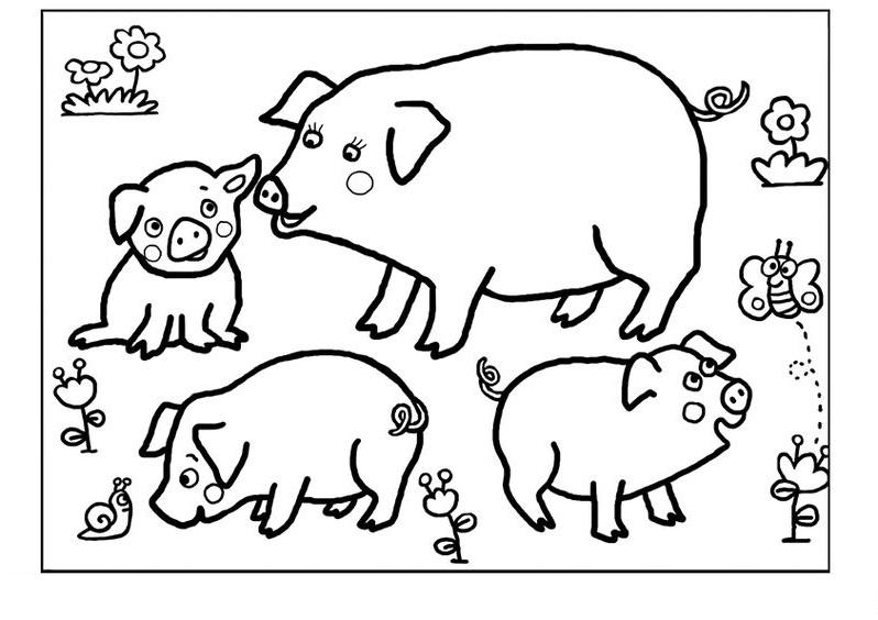 Tranh tô màu gia đình con lợn xinh