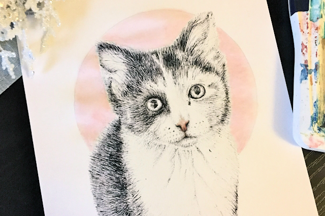 Art Cat Biro Illustration Watercolour