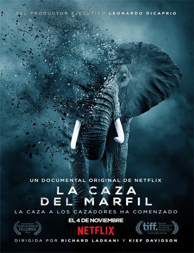Ver El exterminio del marfil (The Ivory Game) (2016) Online
